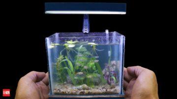 Mini Aquarium Bizimtube Creative Diy Ideas Crafts And Smart Tips